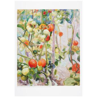 Tomaatteja juliste