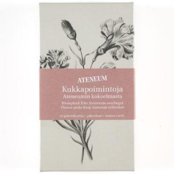 Kukkapoimintoja Ateneumista pakettikortit