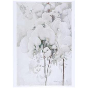 Lumisia männyntaimia juliste