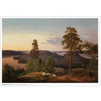 Kuva korkealta lahdelle päin, etualalla mustia ja valkoisia lampaita keskellä, muuten harvaa metsää, paitsi lahtea halkoo metsä keskeltä kuvaa