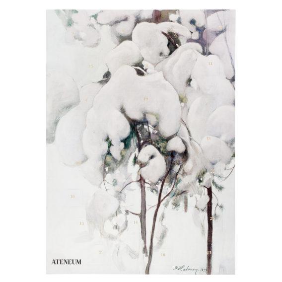 Lumisia männyntaimia joulukalenteri