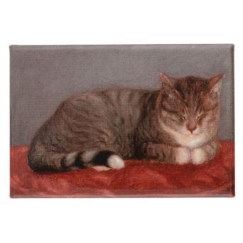 Ruskea kissa makaa punaisella tyynyllä