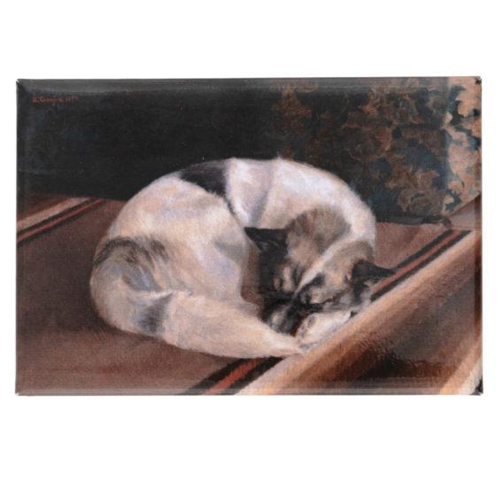 Lattialla kerällä nukkuva valkeaturkkinen koira