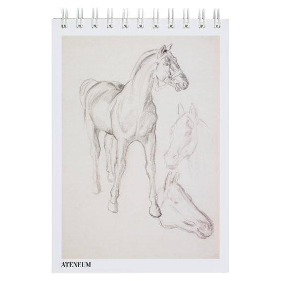 Luonnoslehtiön kannessa luonnostelma hevosista