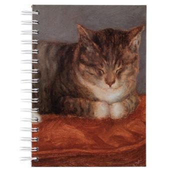 Kierrevihko, jonka kannessa kissa makaa punaisella tyynyllä