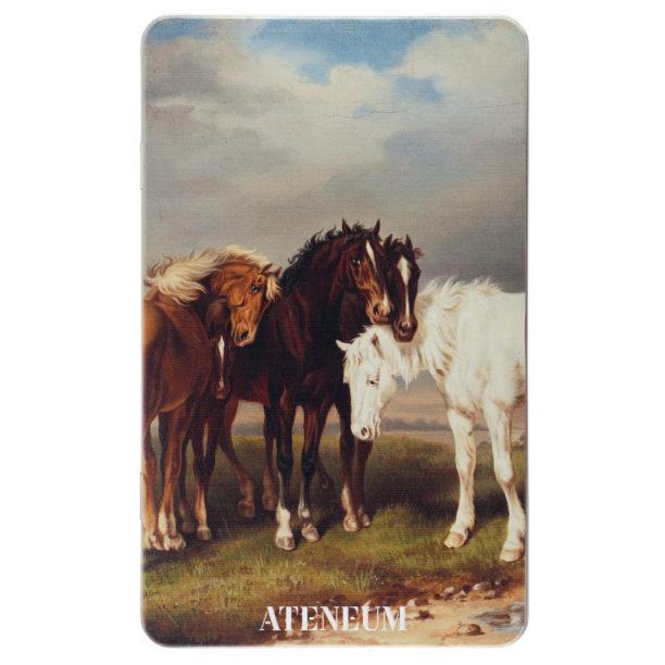 Värikynärasia, jonka kannessa hevosia