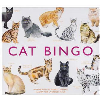 Laatikon kannessa kissojen kuvia
